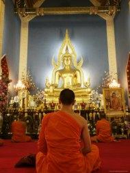 budist monk